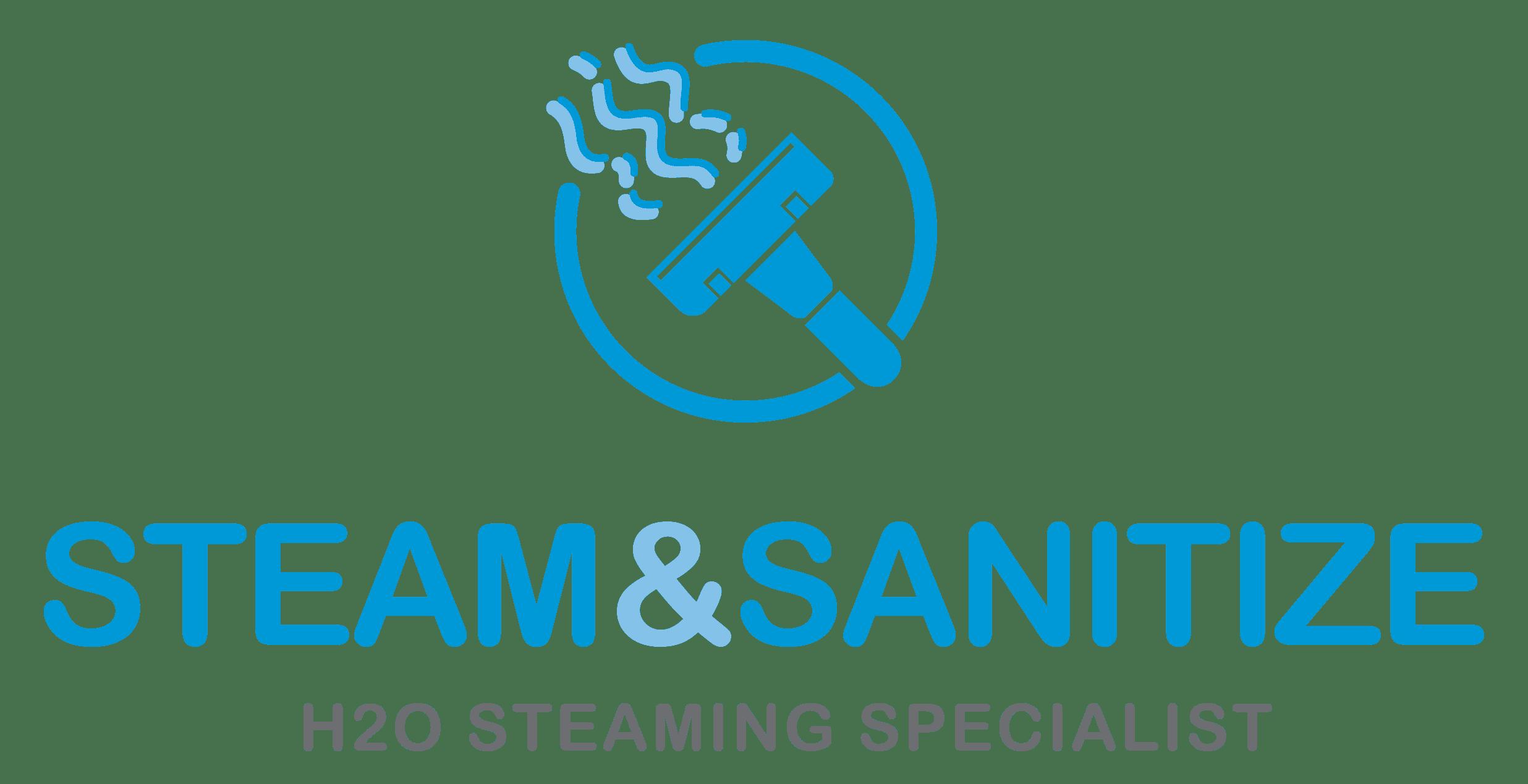 Steam & Sanitize